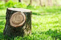 Brentwood tree stump removal services